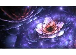 分形,隆起,花卉,数字艺术,3D,分形花,抽象223049