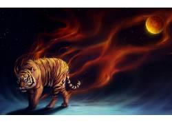 虎,动物,数字艺术,抽象265606