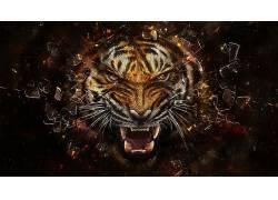 虎,抽象,动物,数字艺术,破灭2383