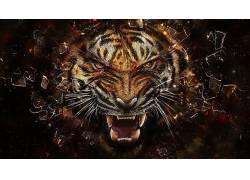 虎,抽象,动物,数字艺术,破灭55985