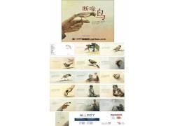 《断喙鸟》绘本故事ppt图片
