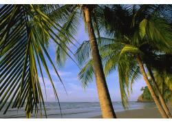 60324,地球,海滩,壁纸图片