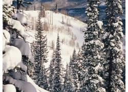 77546,地球,冬天的,壁纸图片