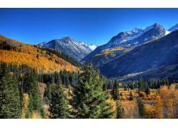 88214,地球,风景,摄影,天空,荒地,树,森林,山,雪,草,布什,秋天,叶