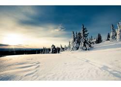 83210,地球,冬天的,雪,天空,壁纸