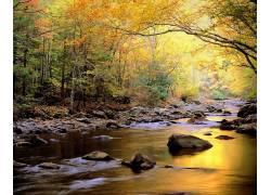 山林小溪河流美景图片