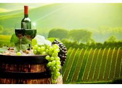 食物,葡萄酒,玻璃,葡萄,葡萄园,仍然,生活,壁纸