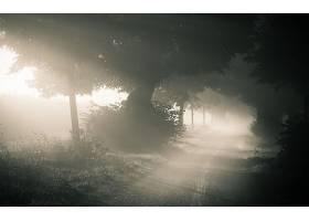 202198,地球,雾,壁纸