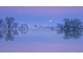 278821,地球,反射,月球,树,自然,水,湖,蓝色,壁纸图片