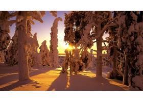 237037,地球,冬天的,壁纸