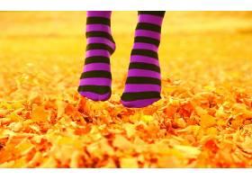 312344,女人,情绪,秋天,季节,自然,叶子,壁纸