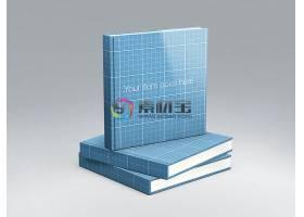 书籍样机模板素材 (63)