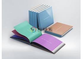 书籍样机模板素材 (72)