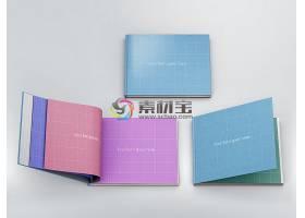 书籍样机模板素材 (73)