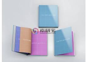 书籍样机模板素材 (84)