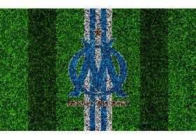 运动,奥林匹克,de,马赛,足球,俱乐部,标识,象征,壁纸(13)
