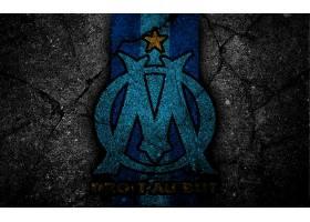 运动,奥林匹克,de,马赛,足球,俱乐部,标识,象征,壁纸(3)