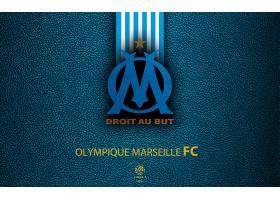 运动,奥林匹克,de,马赛,足球,俱乐部,标识,象征,壁纸(4)