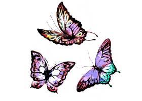 水彩画紫色蝴蝶