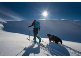 雪地上的男人与动物