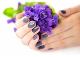 紫色花朵摄影