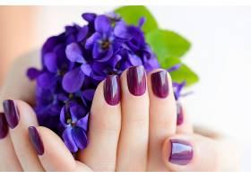 紫色鲜花背景