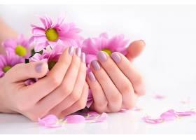 双手捧着的粉色菊花
