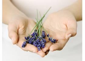 双手捧着紫色的花