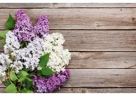 木板上的丁香花