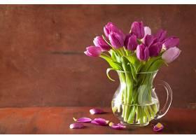 花瓶里紫色郁金香