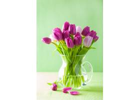 花瓶鲜花-郁金香
