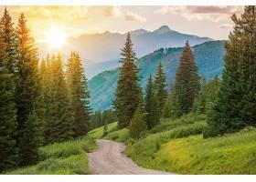 日出与道路