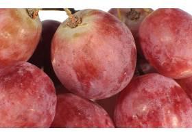 食物,葡萄,水果,壁纸(9)