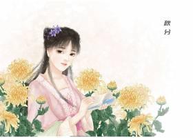 中国风秋分节气手绘美女