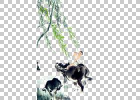 木童柳树PNG免抠素材