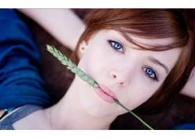 人,蓝眼睛,嘴唇,红发,美女,躺着,看着观众,面对,小穗,黑麦,肖像,