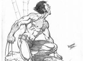 漫画壁纸,金刚狼,x战警,壁纸(31)