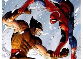 漫画壁纸,蜘蛛侠,Vs .,金刚狼,蜘蛛侠,金刚狼,壁纸