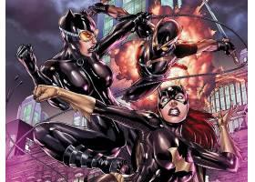 漫画壁纸,蝙蝠女侠,猫女,壁纸