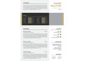 职业技能个人简历PSD素材通用模板