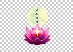 中秋节灯笼蜡烛,中秋节PNG剪贴画紫色,中国风格,节日元素,电脑壁