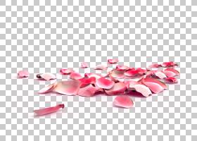 玫瑰花瓣指甲去角质花,桃花瓣,节日,鲜花,秋季装饰,粉红色创意,花