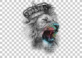 狮子头T恤冠铁,狮子头,狮子戴冠PNG剪贴画T恤,动物,猫像哺乳动物,