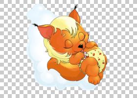松鼠,睡觉的狐狸PNG剪贴画哺乳动物,食物,猫像哺乳动物,动物,食肉