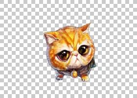 猫小猫绘图动物头像,大猫脸画股票PNG剪贴画水彩画,脸,猫像哺乳动