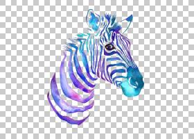 水彩画斑马DeviantArt,彩绘斑马图案拉材料PNG剪贴画紫色,哺乳动图片