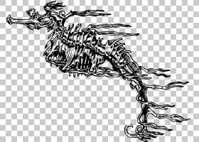 海马绘图骨架,白色动物骨架PNG剪贴画白色,黑色白色,单色,虚构人