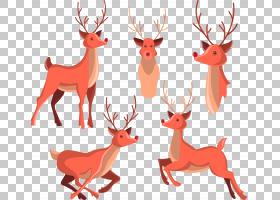 驯鹿绘图,平创意鹿PNG剪贴画鹿茸,哺乳动物,动物,创意艺术品,脊椎图片
