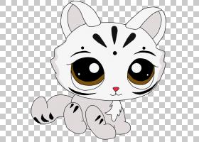 胡须小猫小狗,小猫PNG剪贴画白色,哺乳动物,动物,猫像哺乳动物,食图片