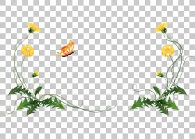 花蒲公英圈,蒲公英图案框架材料PNG剪贴画框架,插花,画,金色框架,图片